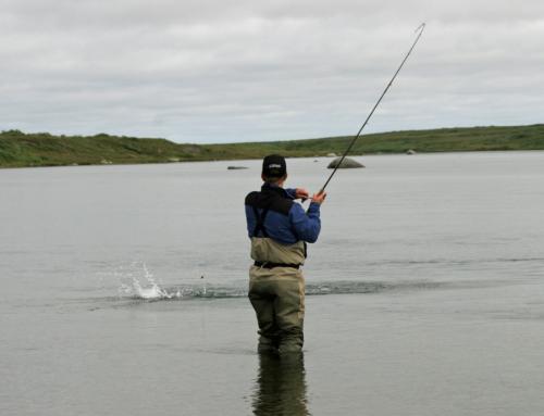 Bobber & Jig Fishing For Silver Salmon